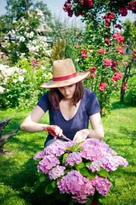 Gardening At Your New Merit Home